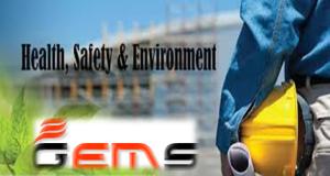 Gems HSE  Logo